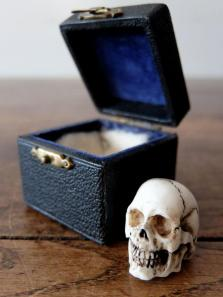 Carved Skull with Case (A0320)