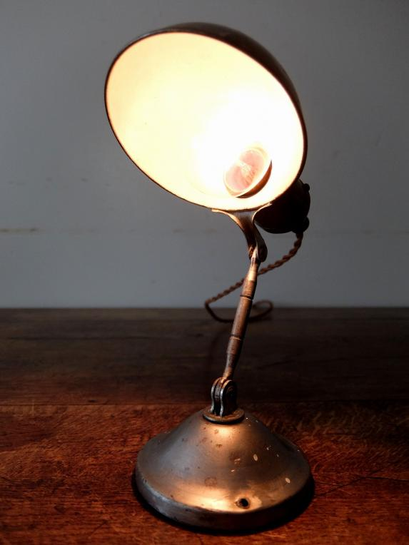 Adjustable Hand Lamp (A0620)