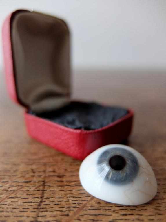 Prosthetic Glass Eye with Box (A0617-03)