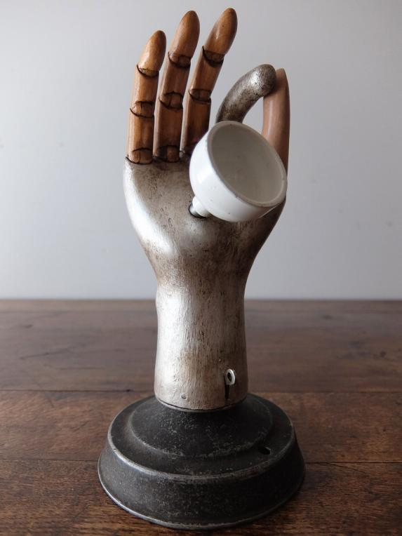 Prosthetic Hand (A1116)