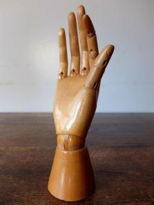 Mannequin's Hand (A1020-02)