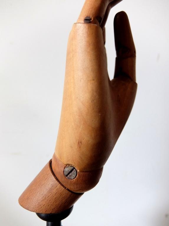 Mannequin's Hand (A0916-02)