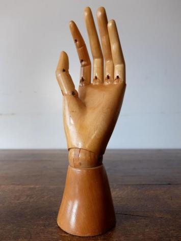 Mannequin's Hand (A1020-01)