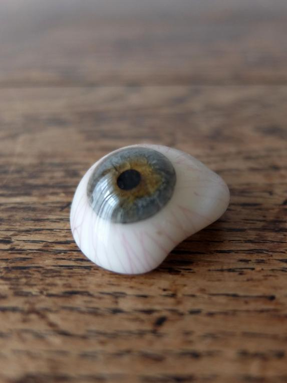 Prosthetic Glass Eyes with Box (B0917-06)