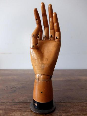 Mannequin's Hand (A1220)